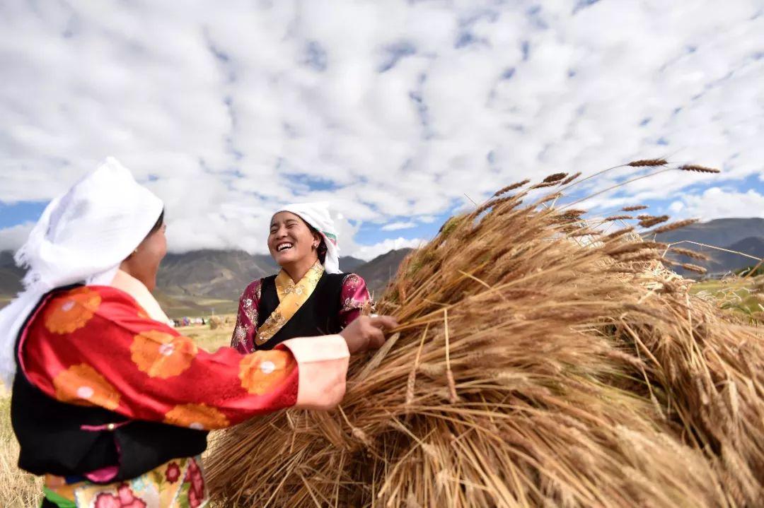 """КНР: """"Свобода вероисповедания полностью обеспечена в Тибете"""""""