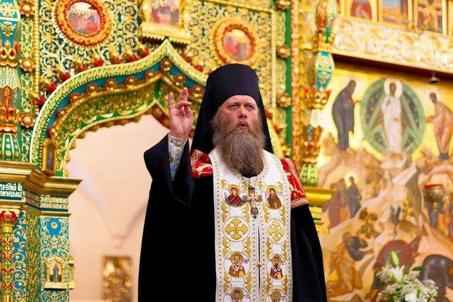 Епископ Порфирий заподозрил вакцину в искажении образа Божия