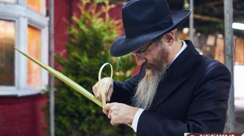 Раввин Лазар желает чистой радости на праздник Суккот