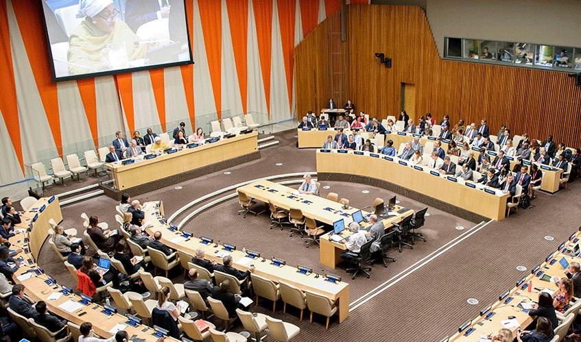 Особый статус ДСМР при экономическом и социальном совете ООН